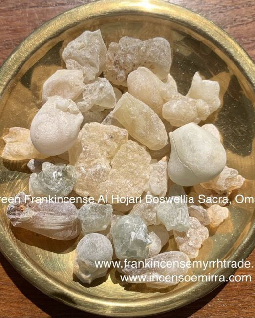 Green Frankincense in resin grains Al Hojari Boswellia Sacra of Oman, the best quality and provenance from the Dhofar Salalah Sultanate of Oman, Alhojari green incense of pure and natural grains resin collected and hand-selected. Retail and wholesale Incense sales.